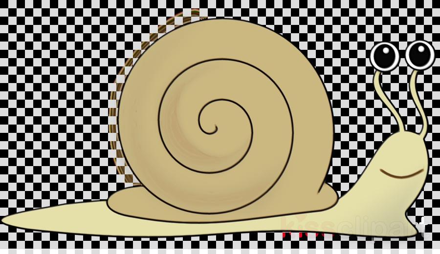 snails and slugs snail sea snail clip art slug clipart.