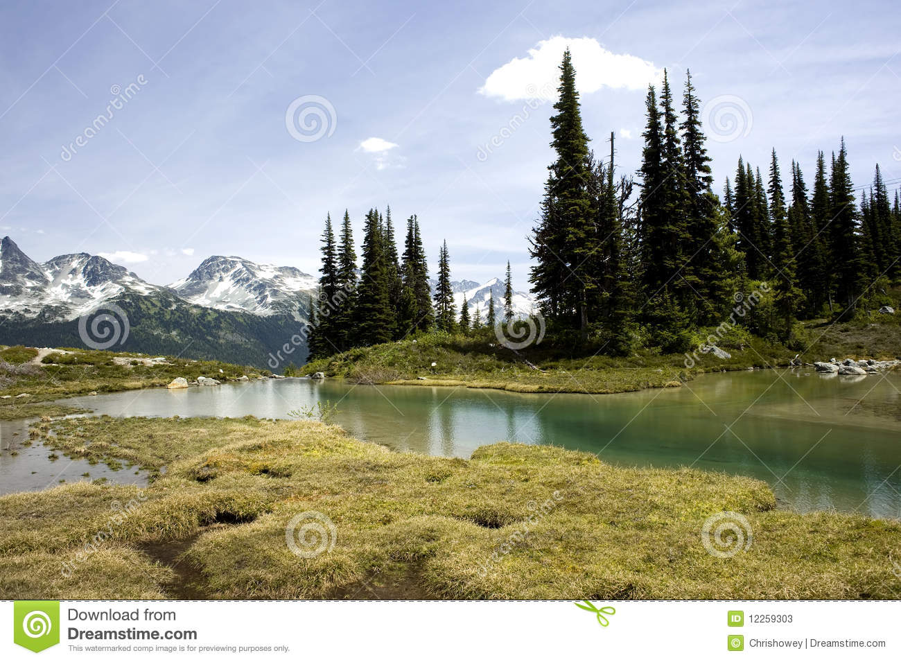 Alpine Lake Vista, Whistler, Canada Stock Photos.