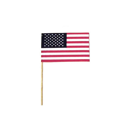 USA Small Stick Flags for Parades 4\
