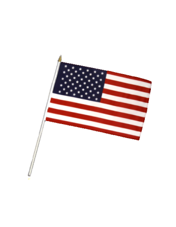 SMALL FLAG : USA.