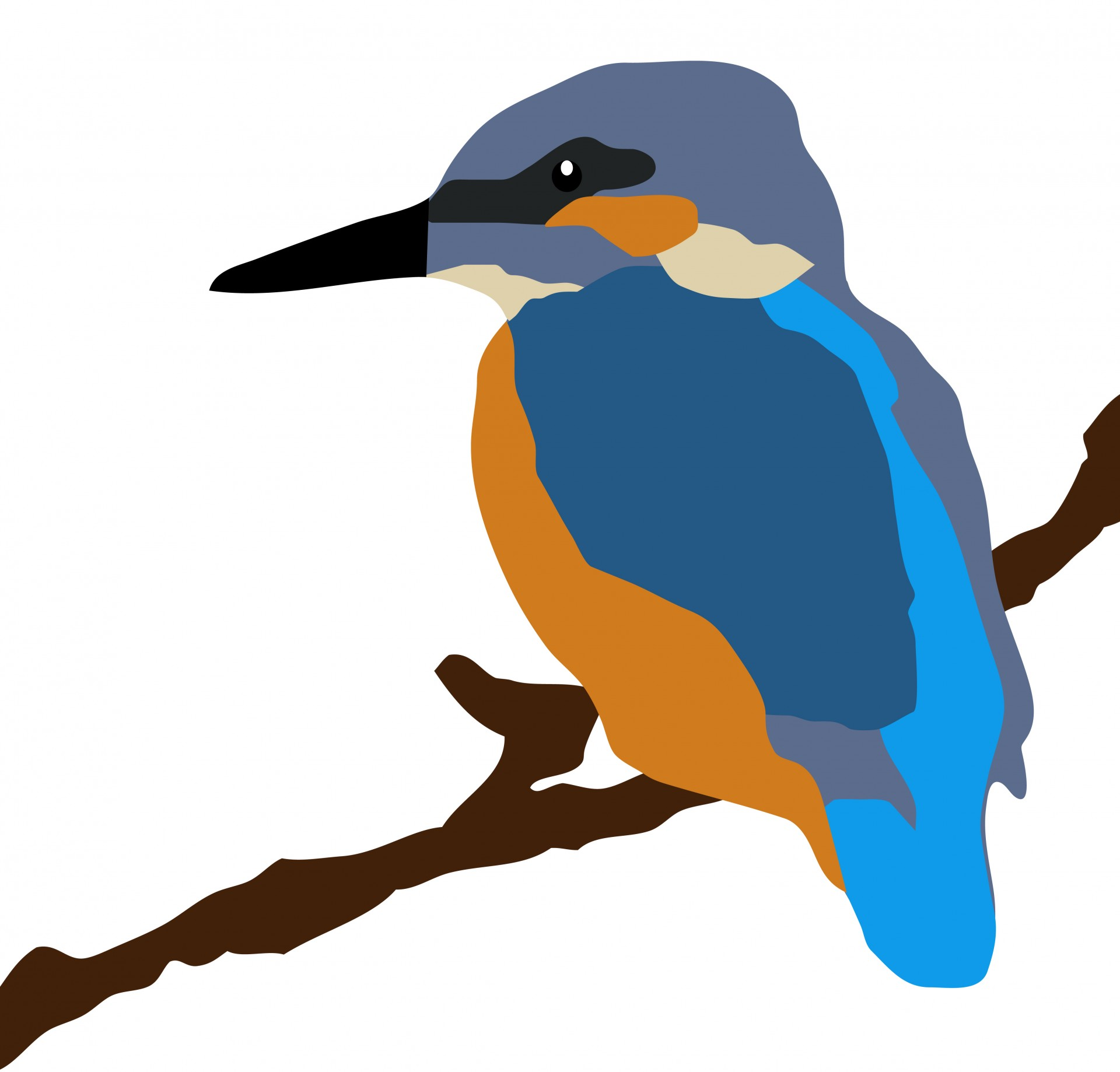 Kingfisher Bird On Branch Free Stock Photo.