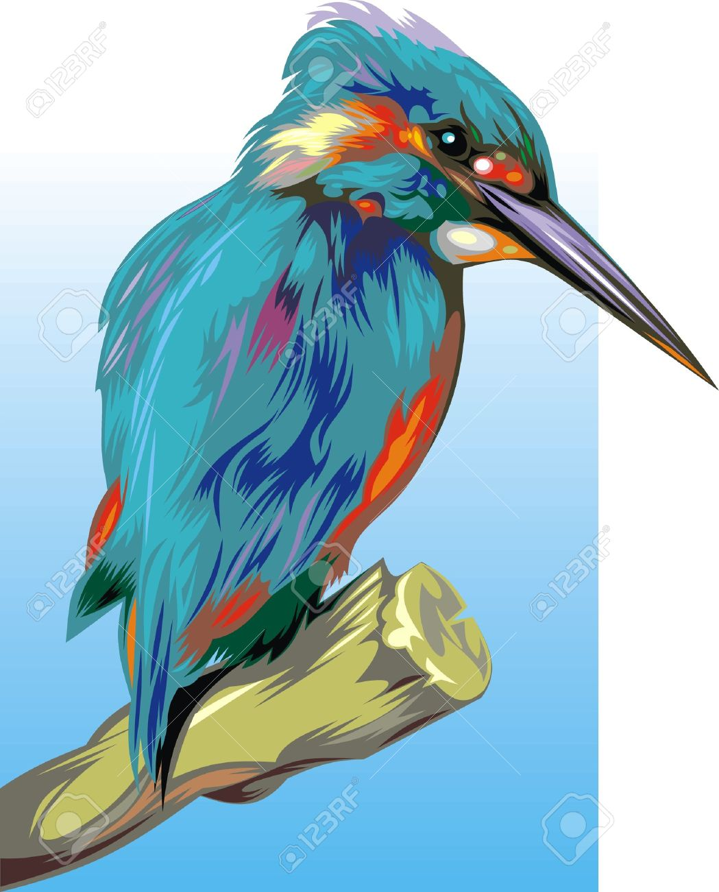 Nice Illustrated Kingfisher On The Blue And White Background.