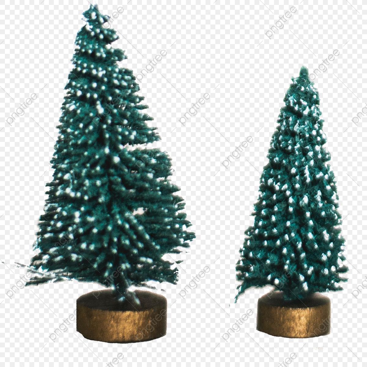Small Christmas Tree, Png, Tree, Christmas Tree PNG.