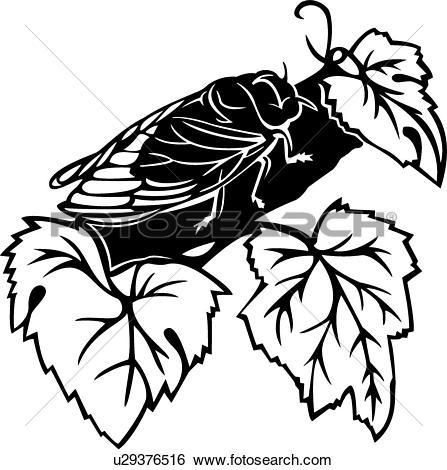 Clip Art of , bugs, cicada, insect, u29376516.