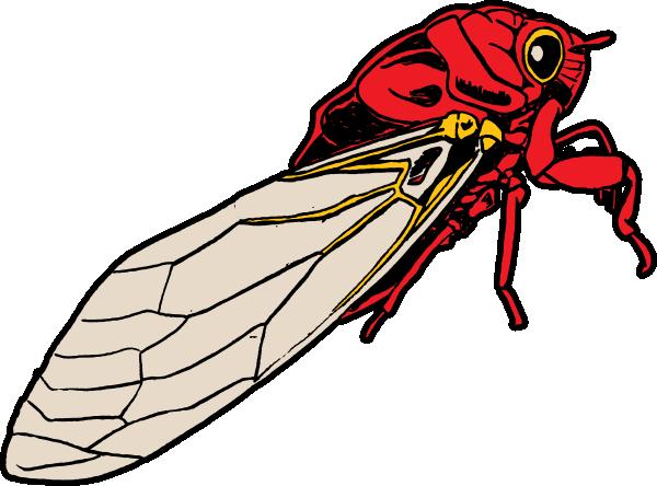 Cicada Bug Clip Art at Clker.com.