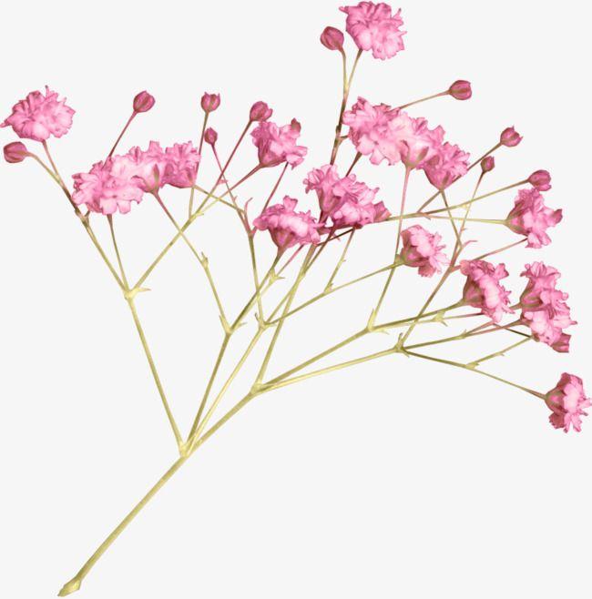 الوردي من ناحية رسم زهرة صغيرة نمط الديكور, وردي, رسمت باليد.