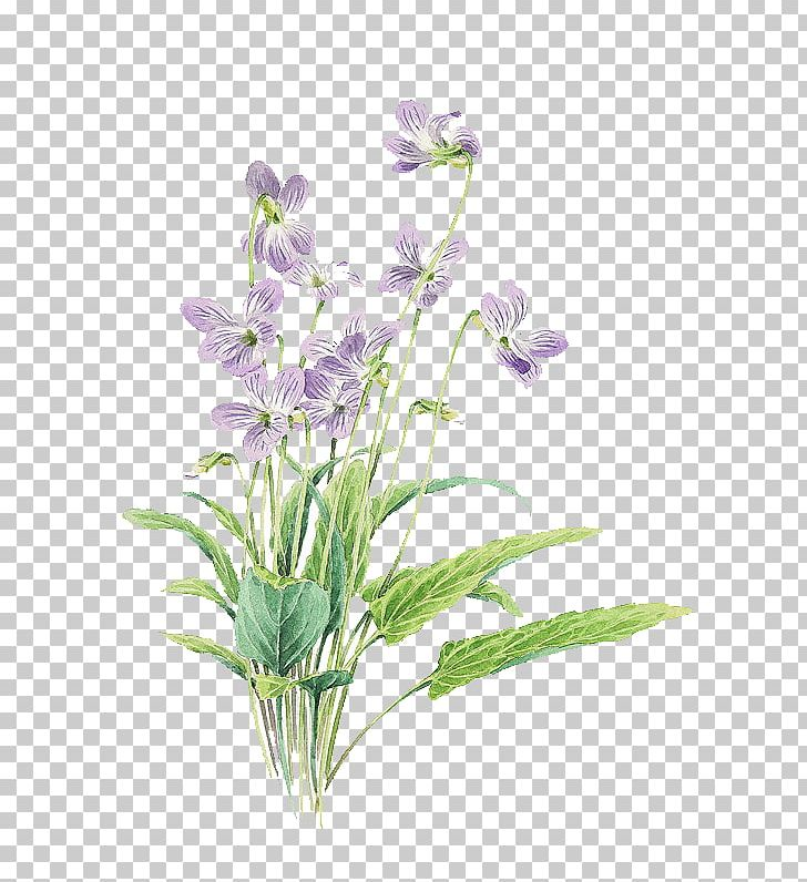 Small Fresh Purple Painted Flowers PNG, Clipart, Artificial.