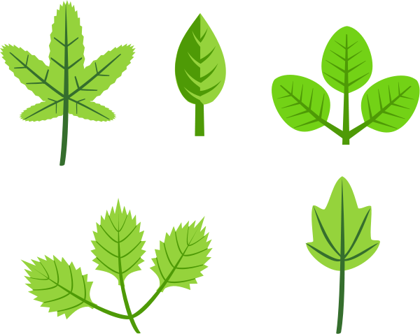 Set of Leaves small clipart 300pixel size, free design.