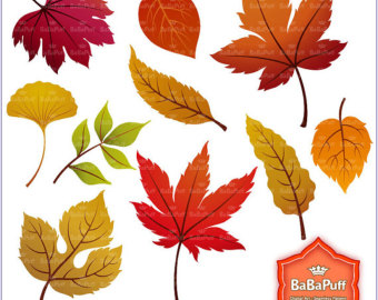 Fall leaf clip art.
