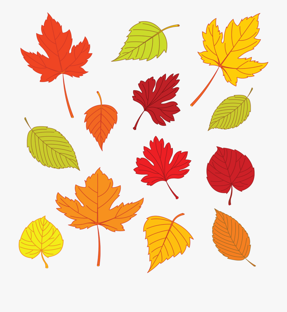 Fall Leaf Clipart Small #216158.