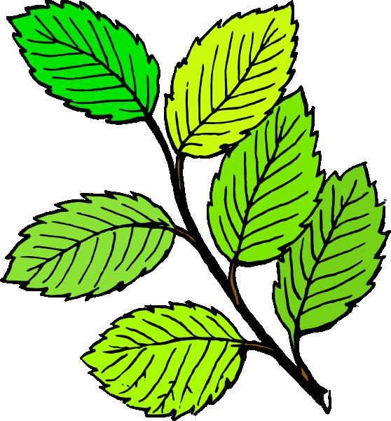Summer Leaves Clip Art at Clker.com.