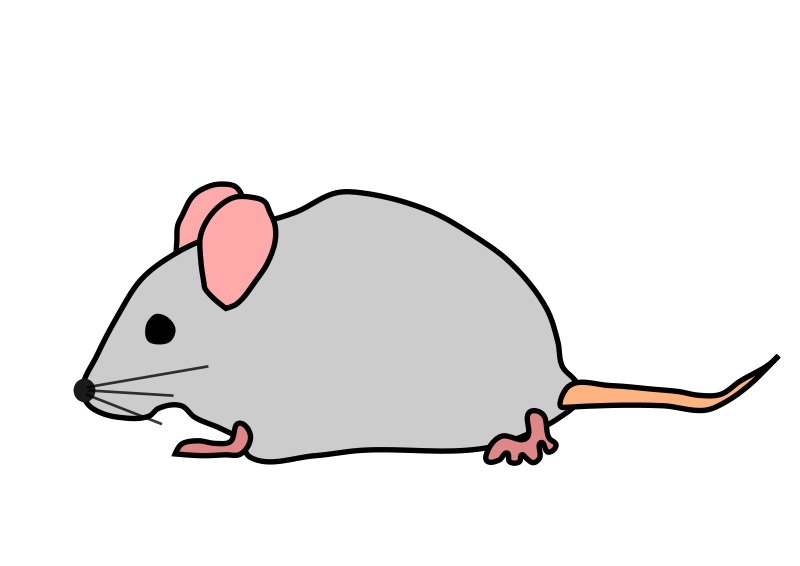 Mouse Animal Clipart.