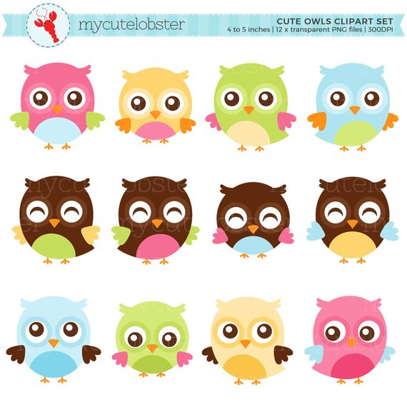 Cute Owls Clipart Set.