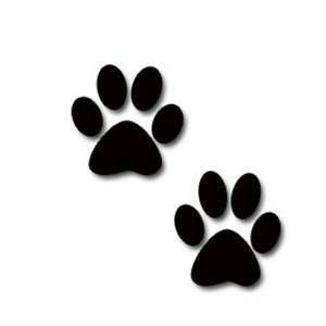 cats paw prints, kitten paw print, kitten paw prints.