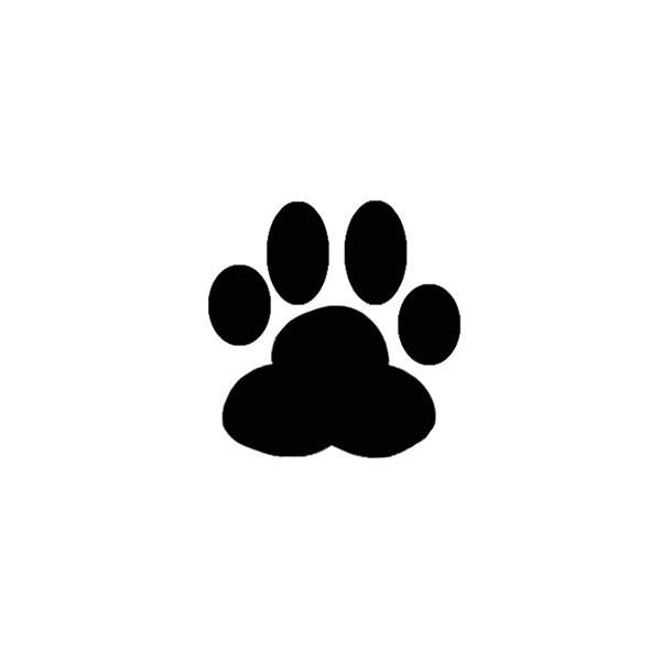 Animal Paw.