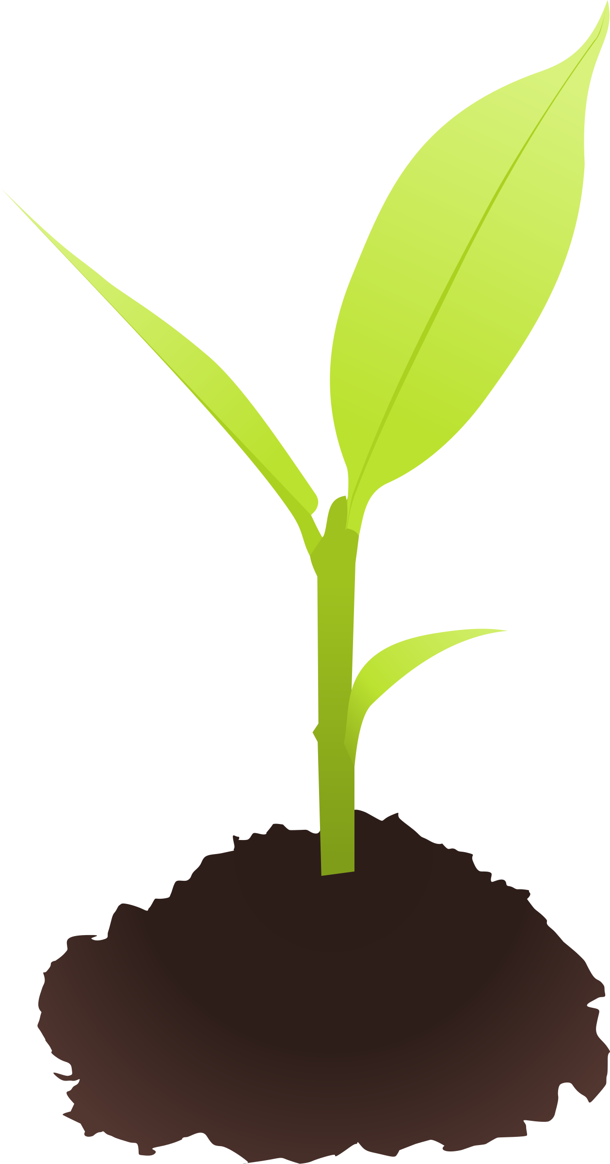 Small plant clipart.
