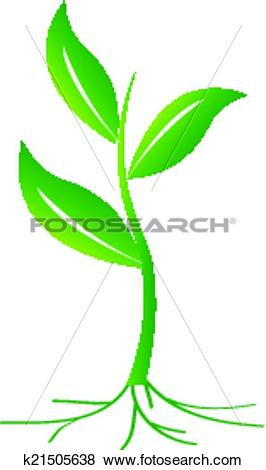 Clip Art of Small Plant k21505638.