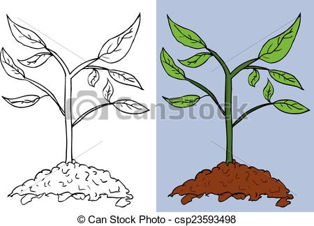EPS Vectors of Doodle Small Plant.
