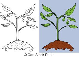 Small plant Stock Illustrations. 9,748 Small plant clip art images.