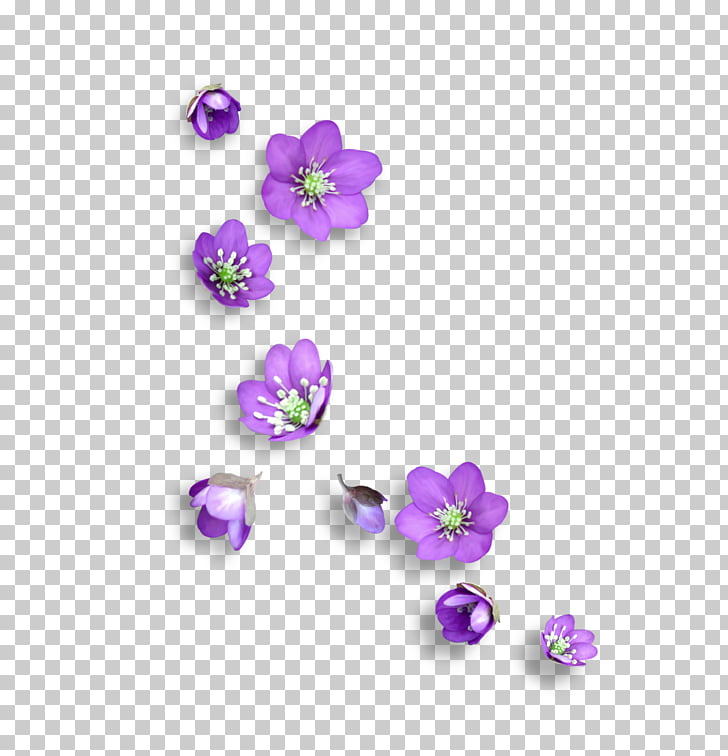 Flower Icon, Small floral, purple flowers PNG clipart.
