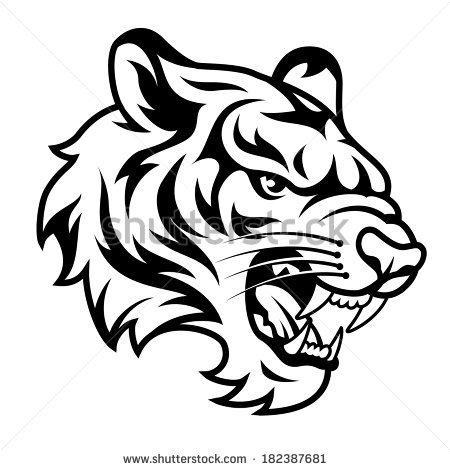 Roaring Tigers Head Isolated On White Stock Vector 139376582.