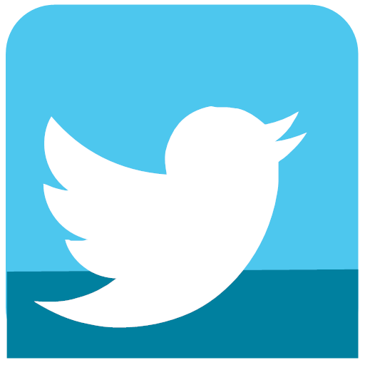 Media sl social twitter icon.