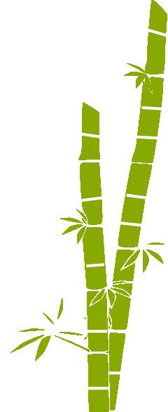 Sugar cane clipart png.