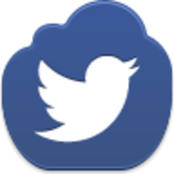 Showing post & media for Small twitter bird symbol.