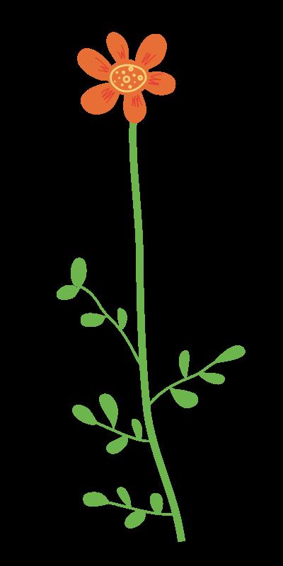 Wild Flower Clipart.