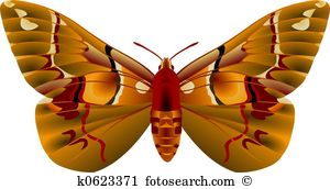 Moth Clipart and Stock Illustrations. 9,910 moth vector EPS.
