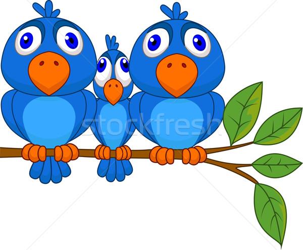 Smaller bird squeezed by bigger bird vector illustration © Teguh.