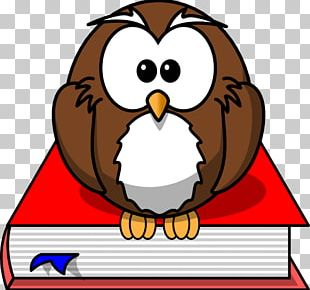 Smart Owl Cliparts PNG Images, Smart Owl Cliparts Clipart.