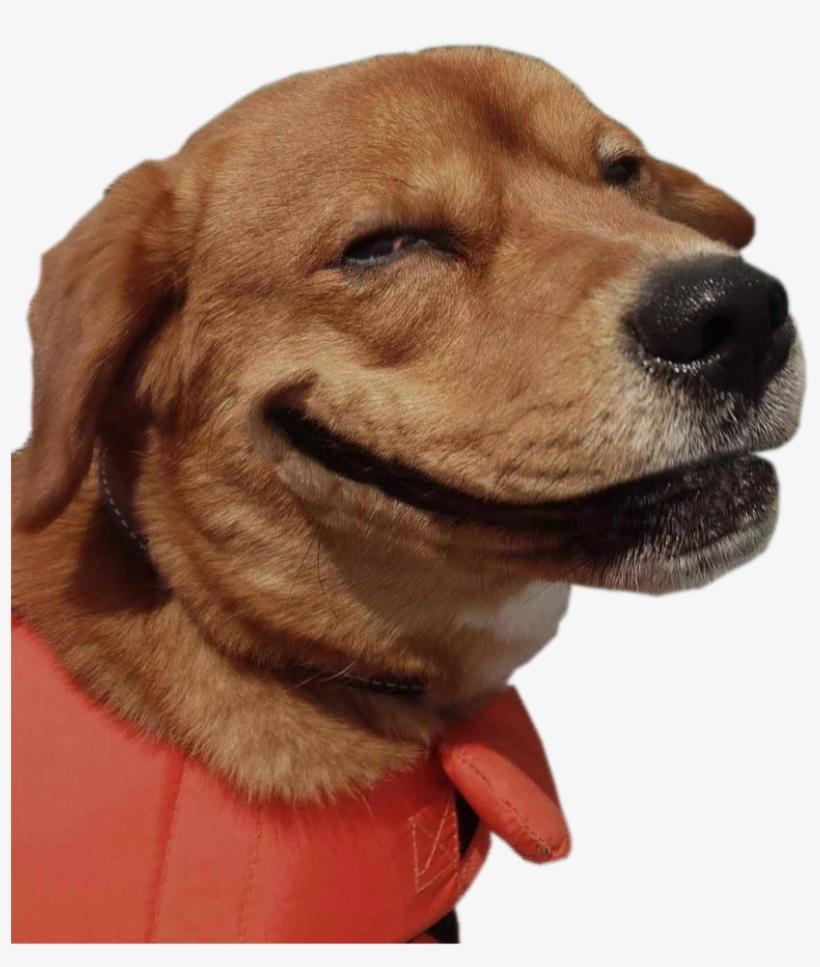 Smiling Dog Weed.
