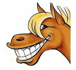 Pix For > Cute Cartoon Horse Face.