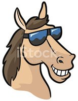 Smiling Horse Mascot With Shades Stock Vector.