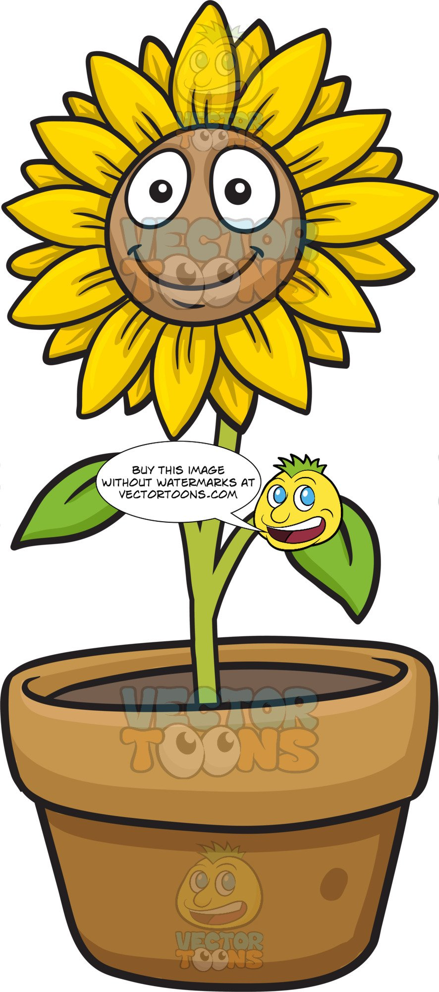 A smiling sunflower.