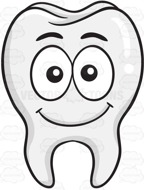Smiling Tooth #anatomicalstructure #bodilystructure.