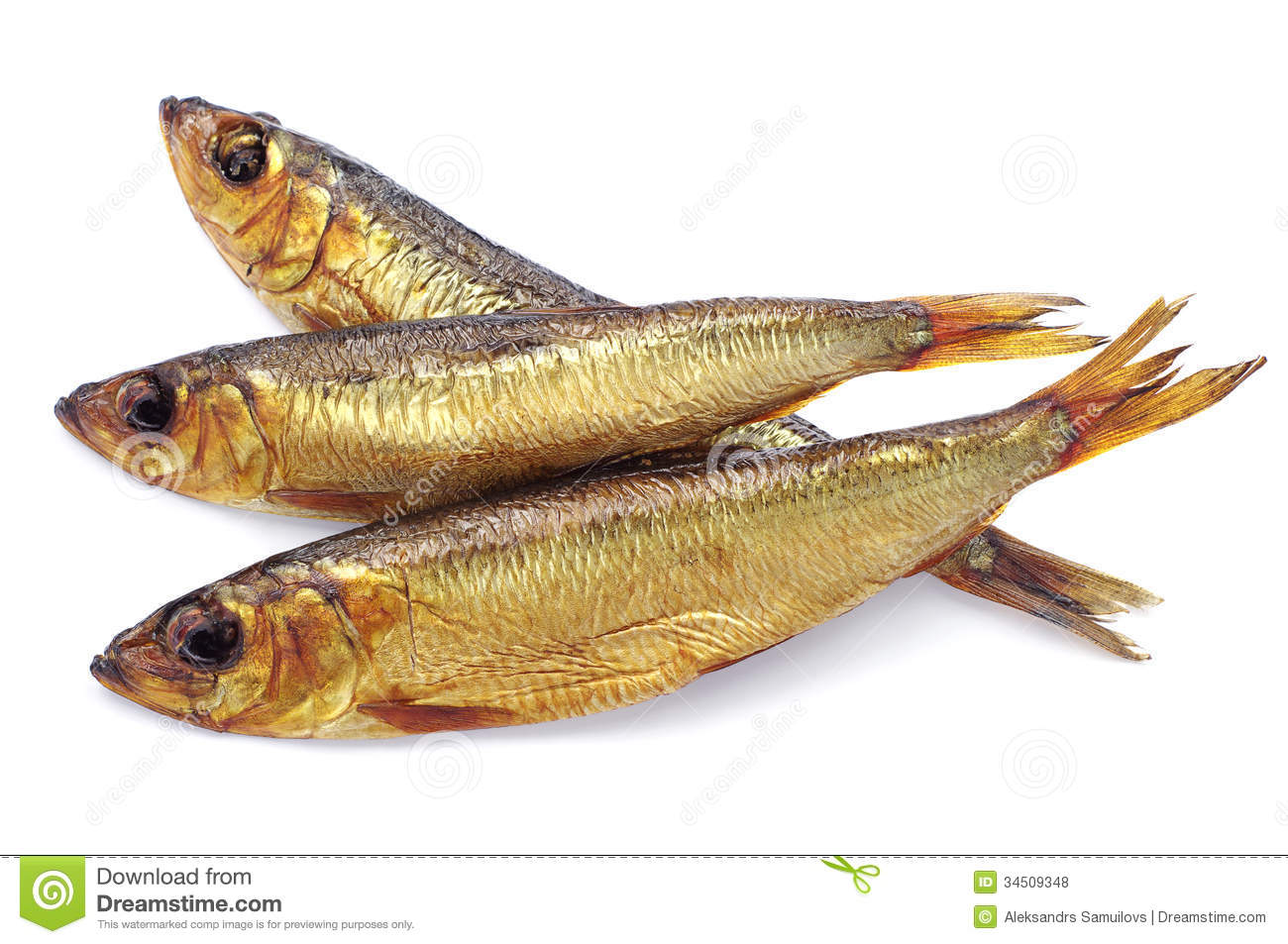 Smoked trout clipart #3