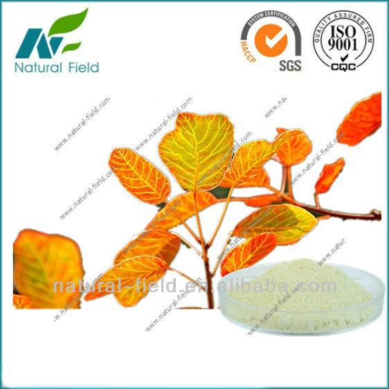 Natural Smoke Tree Extract, Natural Smoke Tree Extract Suppliers.