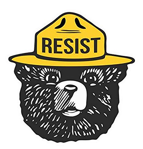 Resist Smokey Bear Decal Laptop Macbook Car Printed Sticker.