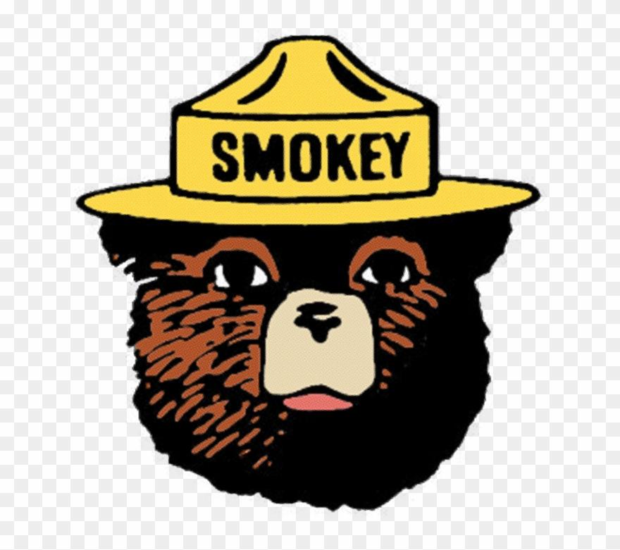 Smokey The Bear Clipart Smokey Bear Pillow Duvet.