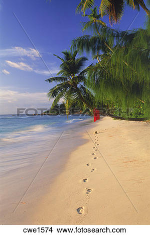 Stock Photo of Footprints along sandy shore on La Digue Island.