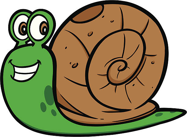 Snail clipart » Clipart Station.