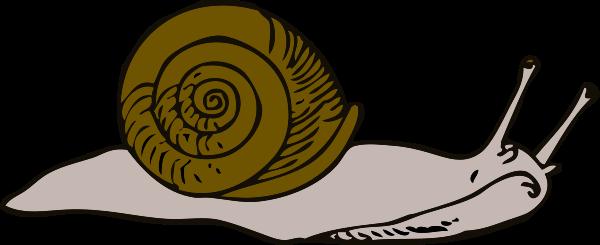 Snail SVG Vector file, vector clip art svg file.