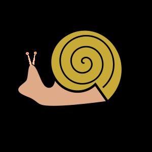 Snail shell Clipart, vector clip art online, royalty free design.