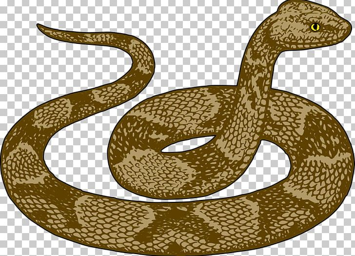 Snake Free Content PNG, Clipart, Animals, Boa Constrictor.