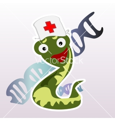 Little doctor snake on a white background vector by Anton_Lunkov.