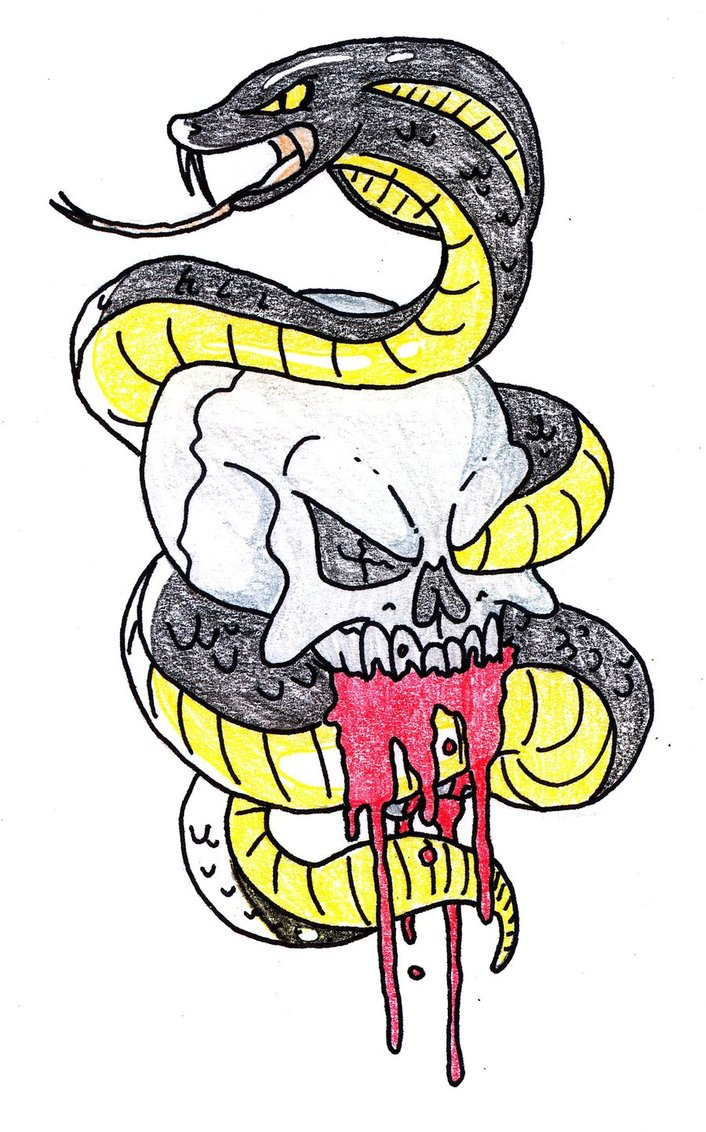 Skull and Snake Tattoo by Soul.