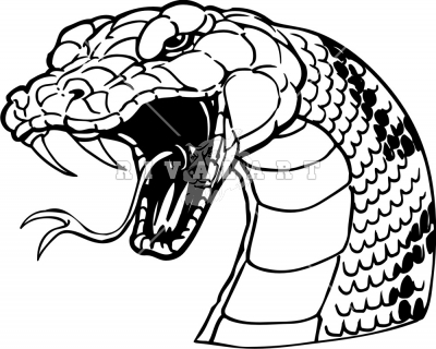 1000+ images about Snake head illustrations on Pinterest.