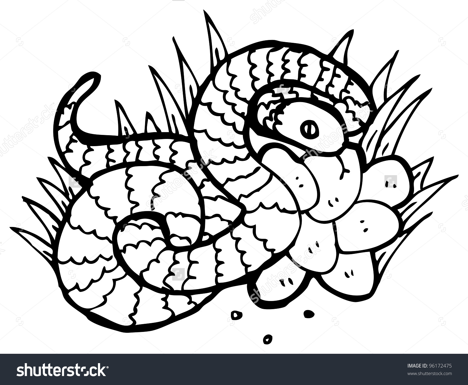 Snake Nest Eggs Illustration Stock Illustration 96172475.